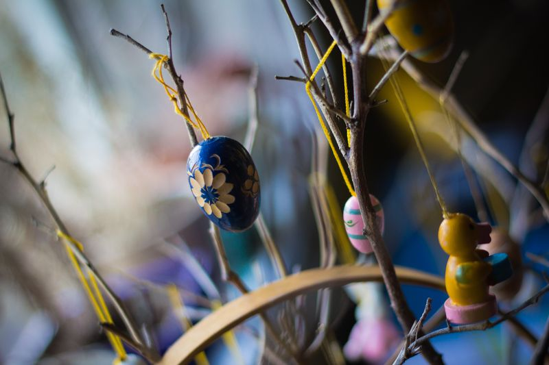 easter tree, ornaments, eggs, spring